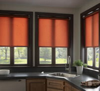 Lutron Motorized Shades Reduce Glare